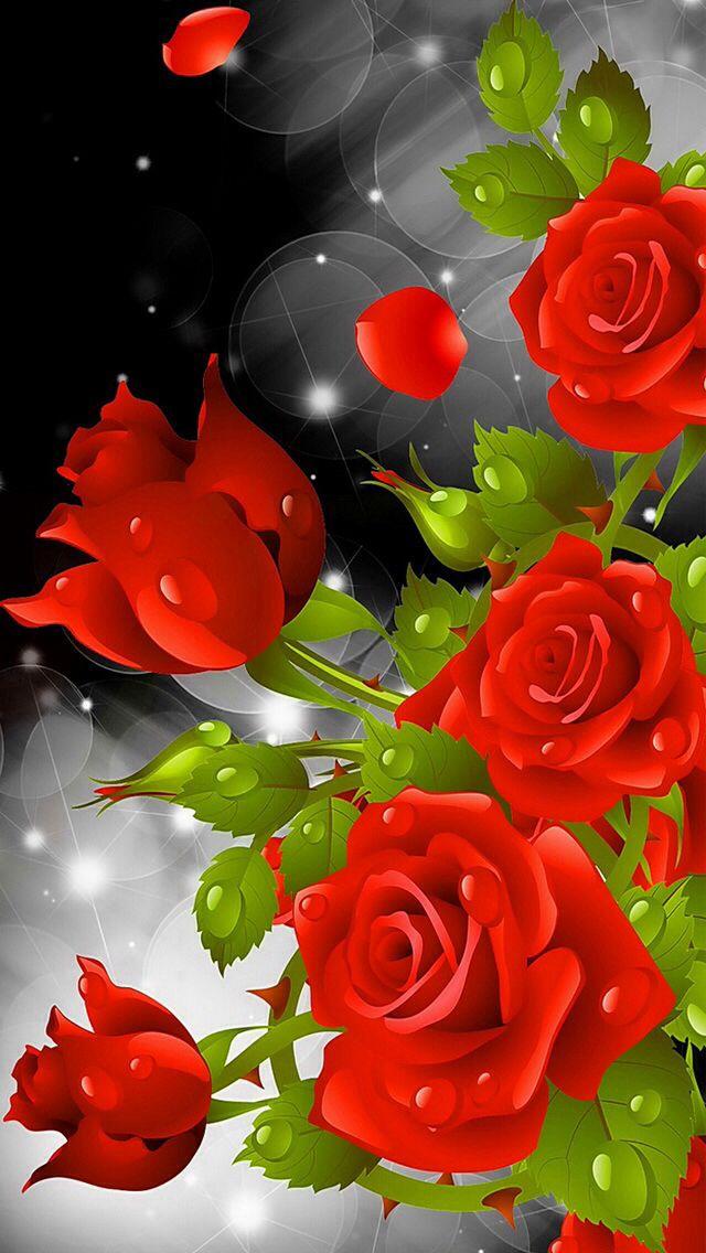 Пин от пользователя Karelia Alcala на доске imagenes Fascinantes | Imagen rosa, Rosas rojas и Rosas
