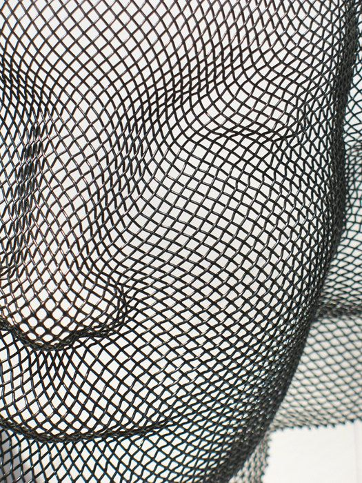17 Best Images About Wire Mesh On Pinterest Sculpture