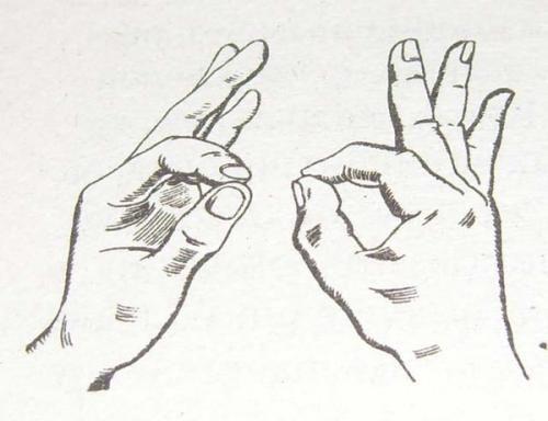 Мудры. Гимнастика пальцев.