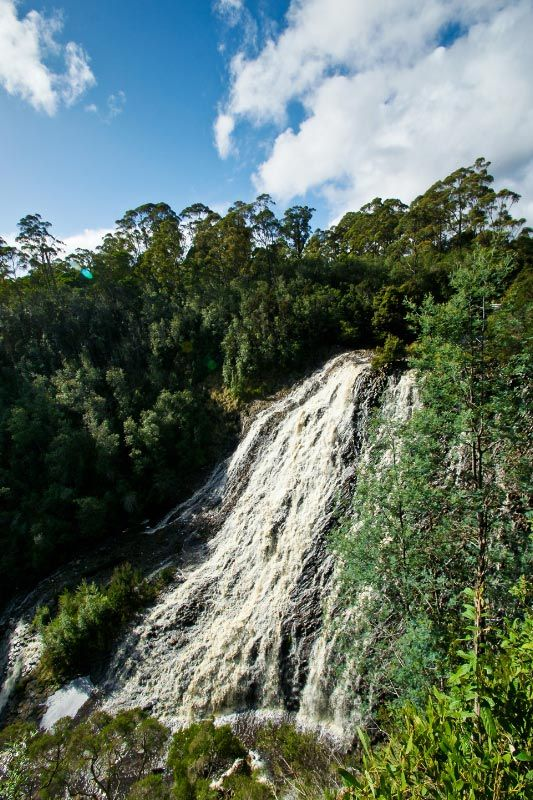 Dip Falls, Dip River Forest Reserve, north west coast region. Article and photo by @Carol M Haberle for Think #Tasmania.