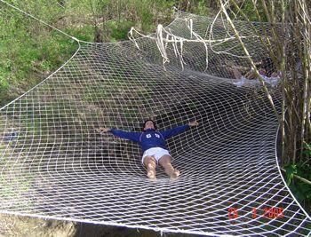 mega tree hammock by barbara butler   i want  to do   pinterest   butler indoor hammock bed and indoor hammock  mega tree hammock by barbara butler   i want  to do   pinterest      rh   pinterest