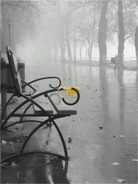 Rain...it's pouring