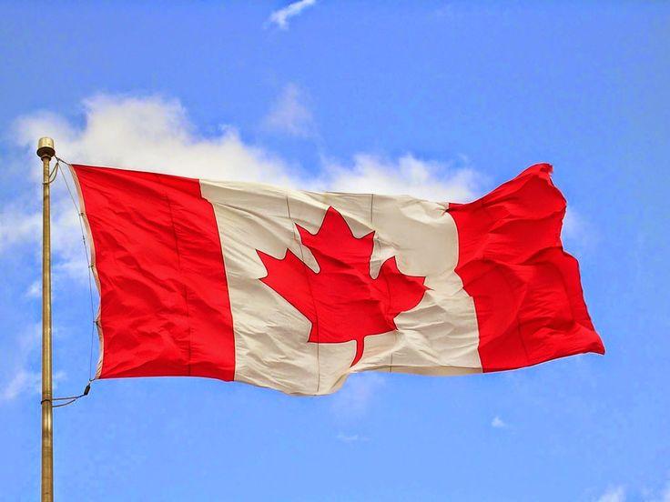 Bucknackt's Sordid Tawdry Blog: Attaque sur Ottawa: Le PM Harper cite motif terror...