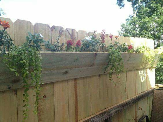 Best 25 fence planters ideas on pinterest happy day for Privacy planter ideas