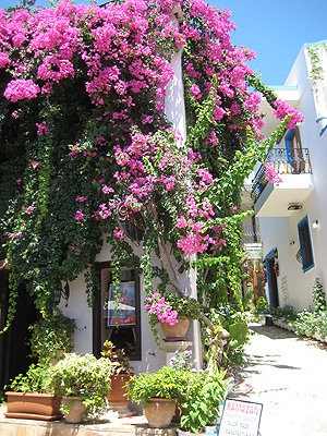 Kalkan, Turkey..............have had lots of happy times there