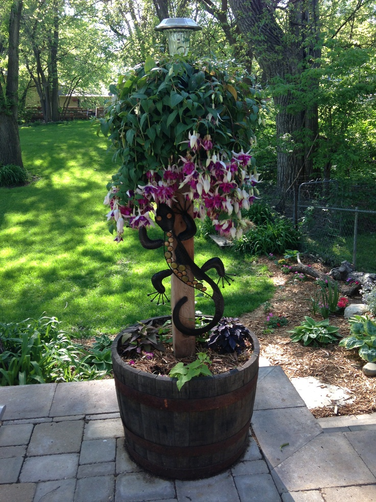 Marvelous Whiskey Barrel Planter...put A Hanging/training Plant On A Post For