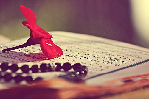 """""""Ey geceyi sabaha çeviren Rabb'im. Șüphesiz bizim yüreğimizi aydınlatmak sana Zor gelmez ...""""  Islamul"""