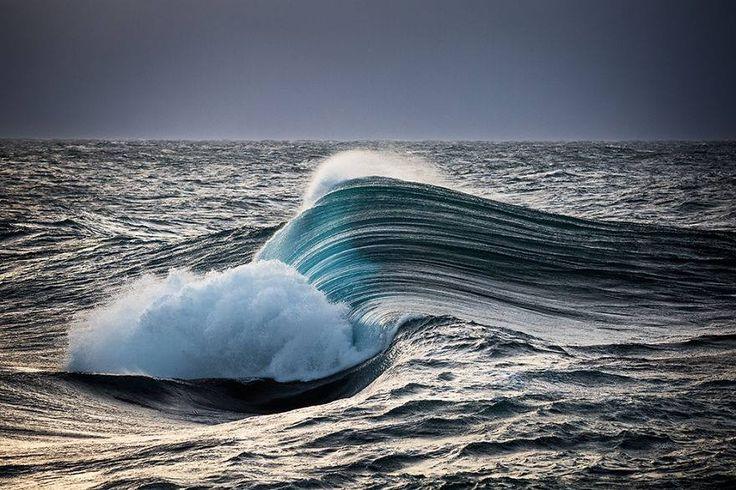 Tsunami Fotográfico, Warren Keelan
