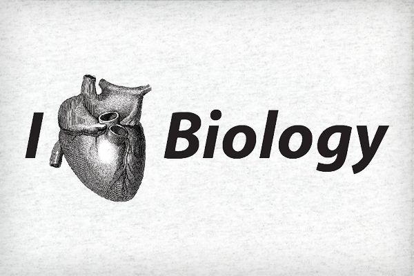 ib extended essay biology Use either the subpage links below, or expand the extended essay exemplars on the left bar to access the various subject exemplars subpages (9): biology chemistry english history mathematics psychology theatre visual arts world studies.