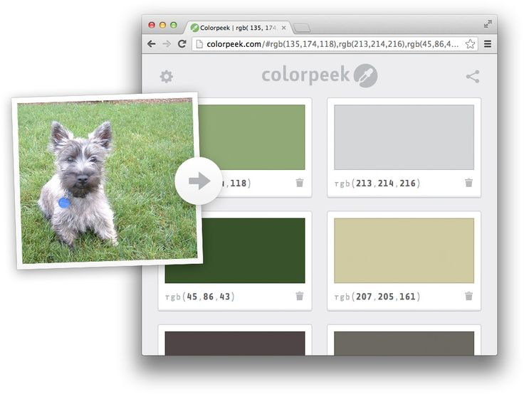 Colorpeek: A Simple Way to See and Share CSS Colors   CSS-Tricks