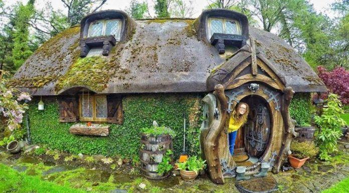 İnsaNewS: Kendine bir Hobbit evi yapan kadın: Stuart Grant