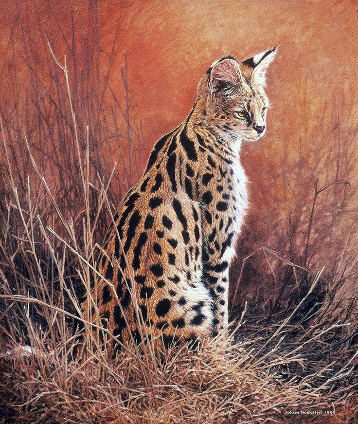 арт картинки дикие кошки они для придания