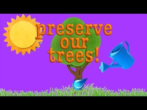 Tree Song- Learn about Trees! Roots, and Trunks, and Leaves!