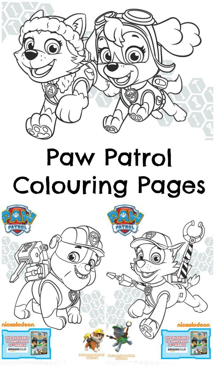 Paw Patrol Pups and the Pirate