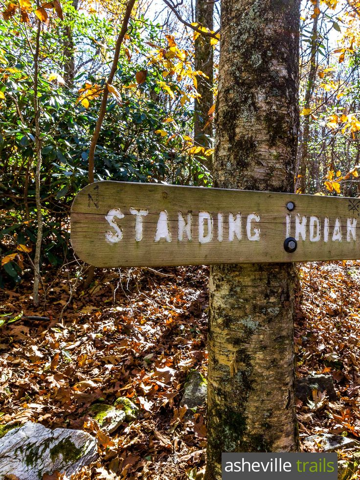 Standing Indian Mountain: hiking the Appalachian Trail from Deep Gap, NC