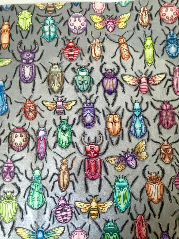 Garden Bugs Adult Coloring Colouring Books Pictures Johanna Basford Colour Inspiration Beetles Secret Gardens