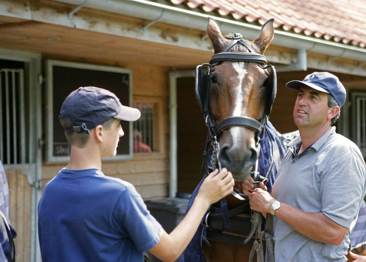 Paardrijden in de eindeloze bossen. Stal uw paard in onze eigen stallen.