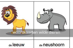 thema jungle - Lespakket - thema's, lesideeën en informatie - onderwijs aan kleuters