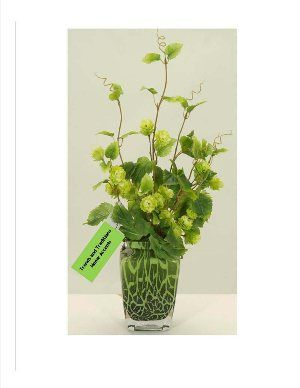 "26"" Baby Hops Artificial Silk Flowering Vine in a Green Reticulated Patterned Vase. Silk arrangement created by Fosters Point who is noted for their exquisite silks. $140.00 includes shipping. www.trendsandtraditionshomeaccents.com"
