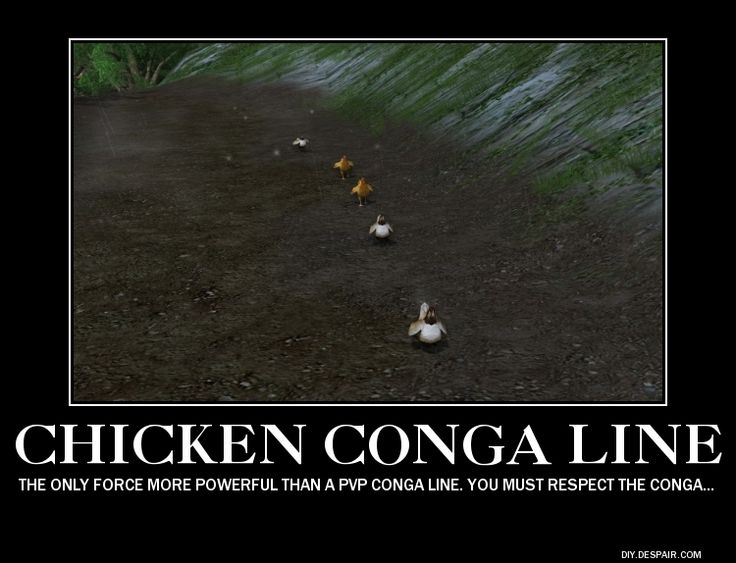 Chicken Jokes One Liners: 17 Best Images About Lotro Fun On Pinterest