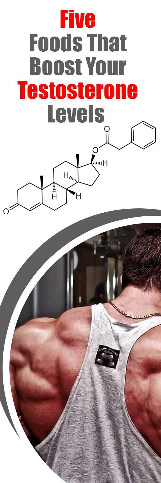 Five Foods That Boost Your Testosterone Levels
