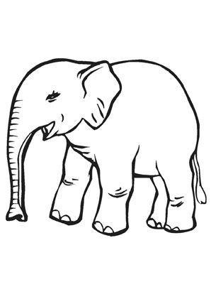 ausmalbild kleiner baby elefant zum ausmalen. #