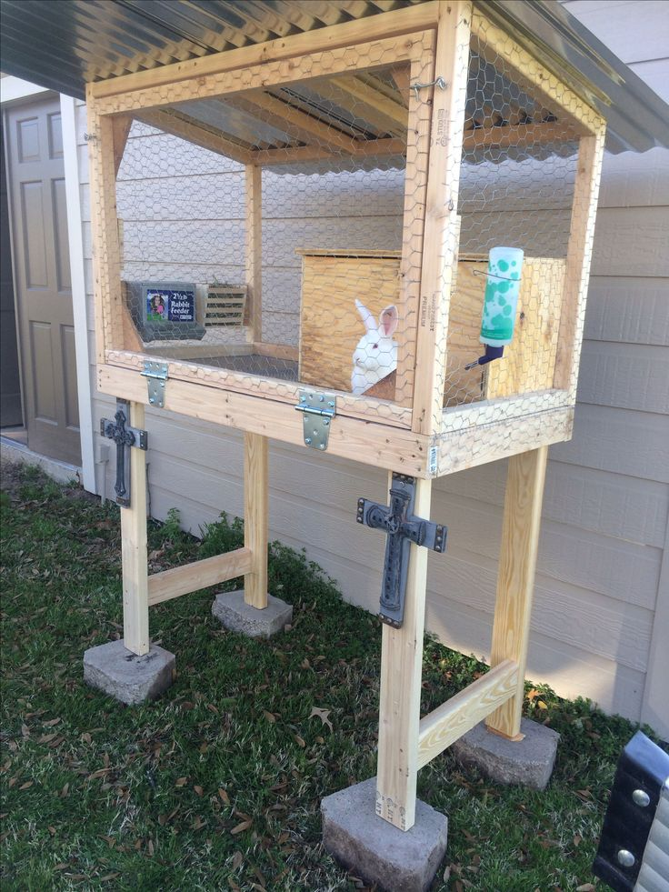 Best bunny hutch ever!!!!