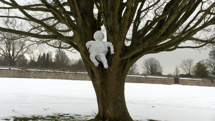 'As she took a walk through a park in Sevenoaks, Kent, Kathy Jordan spied this little person who obviously wanted a better view of the surrounding snowy scenes.'