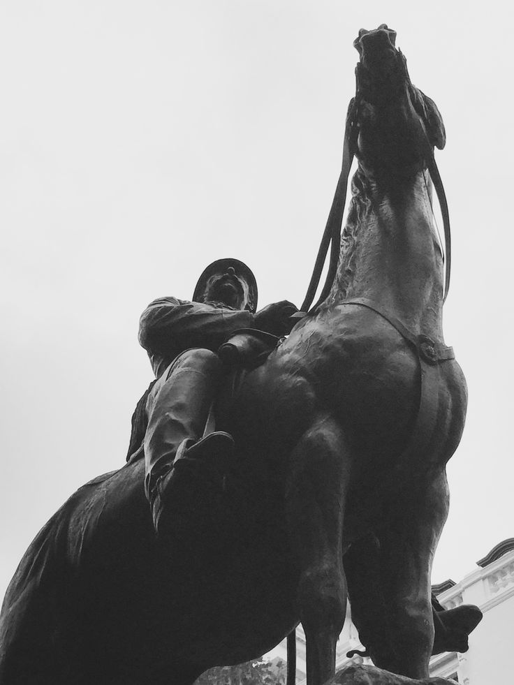 There Is Always A Time & A Place For One To Get Up On Their High Horse - Anyone Know Where We Are?