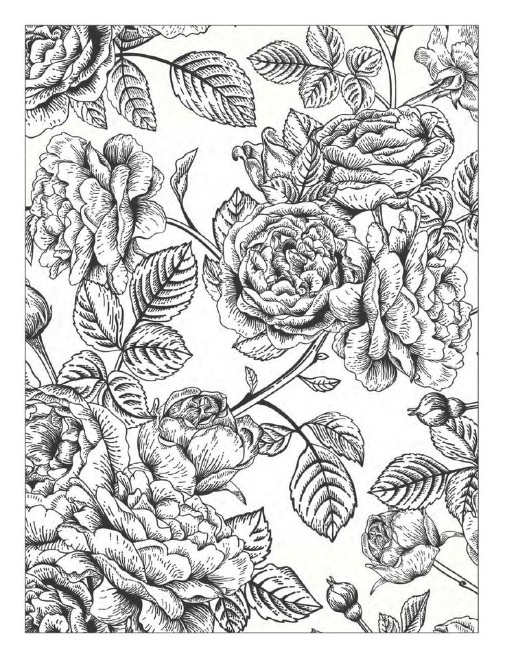 17 Best Ideas About Coloring Books On Pinterest Adult Detailed Pattern Coloring Pages
