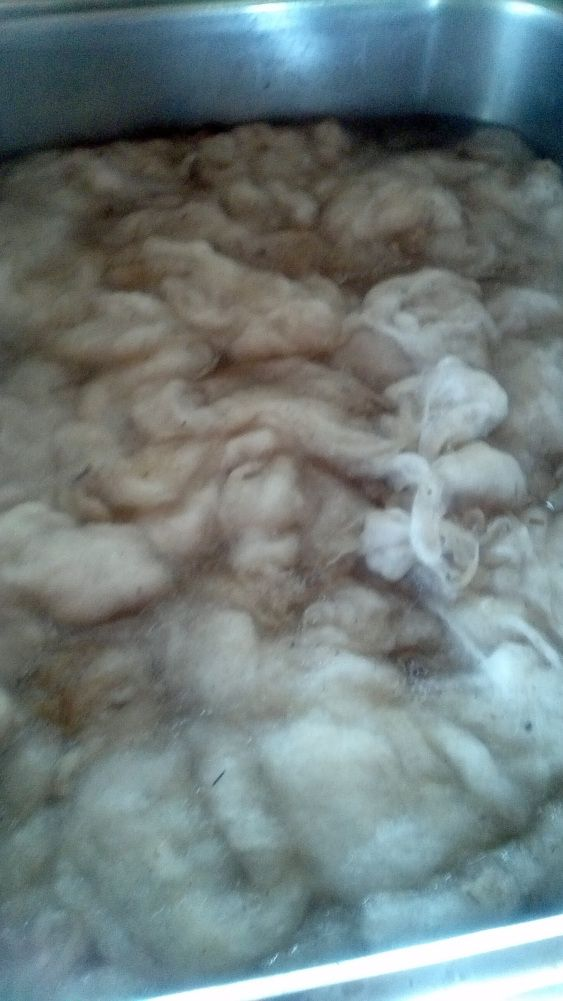 The fleece will then be rinsed several times