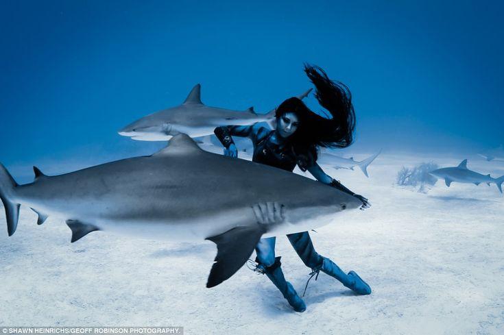 hannah fraser swims with tiger sharks   Hannah Fraser, Model, swims with 16ft killer tiger sharks in images by ...