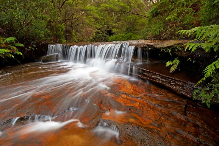 Cascade above Wentworth Falls, Blue Mountains, NSW, Australia.