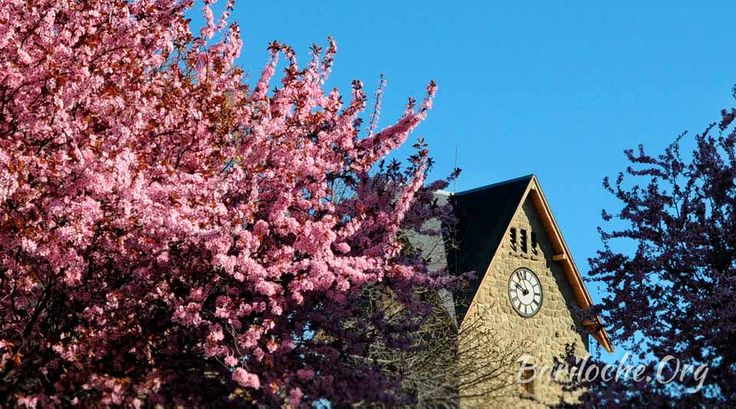 Hermoso día de Primavera en Bariloche! 12° la temperatura actual, foto Centro Cívico // Bariloche.Org