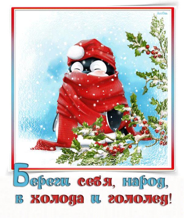 Открытка одевайся потеплее зима