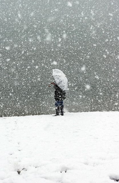 When it snows the world goes quiet That's why I love winter... Walking in the snow, watching movies while it snows, etc. I will find snow this winter and embrace it