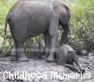 One of my favourite elephant shots made a perfect backdrop for my article on childhood memories :)