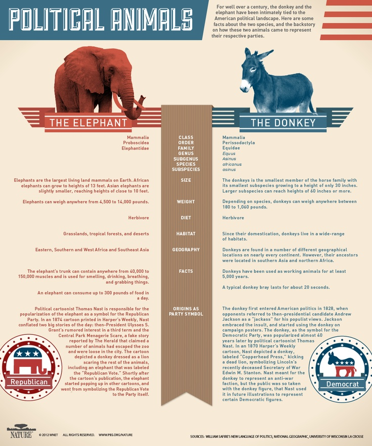 For over a century, the donkey & the elephant have been intimately tied to the American political landscape. Learn more about the two & discover how they came to represent their respective parties.