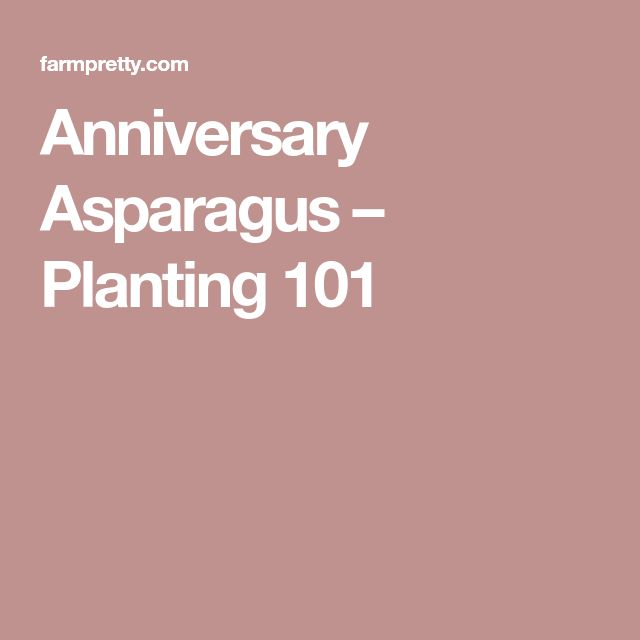 Anniversary Asparagus – Planting 101