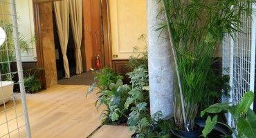 Eventi « Cappellini giardinieri