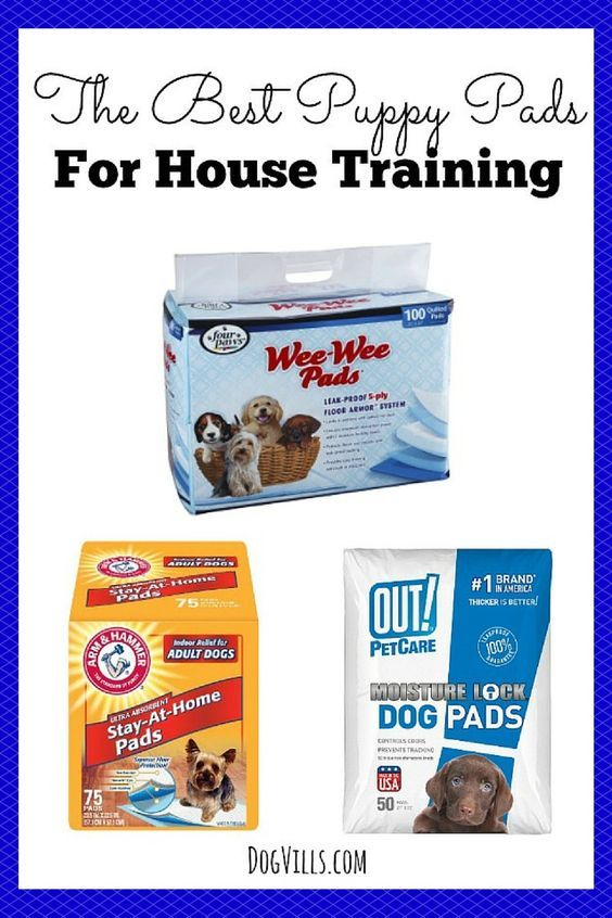 If your puppy is an indoor pet, you will need some of The Best Puppy Pads For House Training to keep your carpets safe and help with potty training.