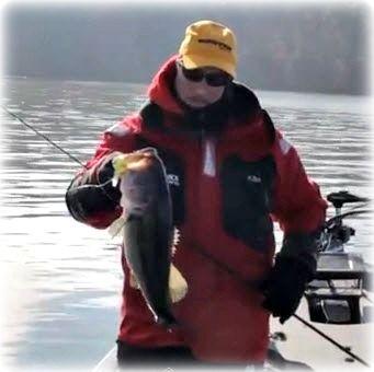 Winter Bass Like Flat Sided Crankbaits