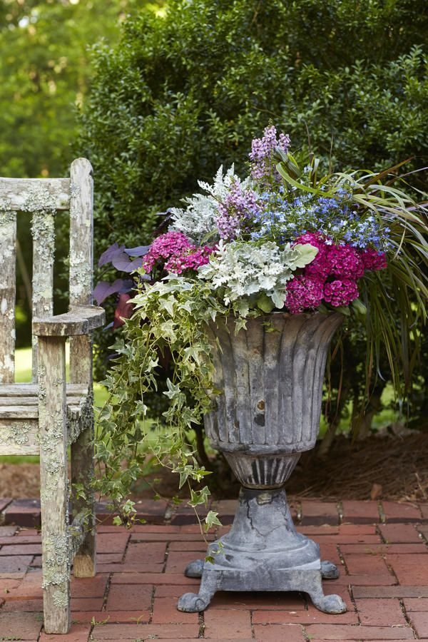 191 best images about timeless urns in decor on pinterest container gardening planters and ferns - P allen smith container gardens ...