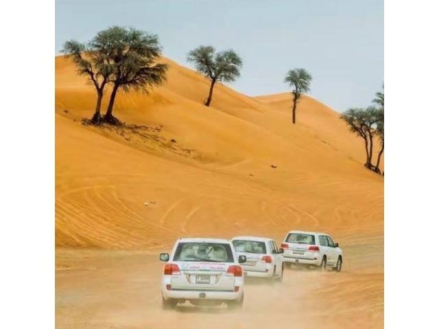 Desert Safari Dubai Special Discount buy one get one free @ 150 AED Dubai - Birds Styles