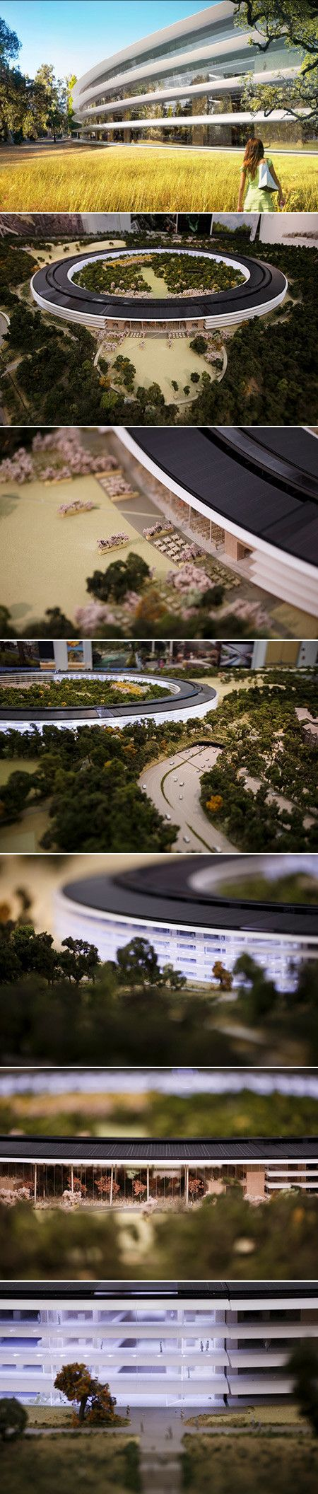 Apple's Spaceship Campus - Apple CEO Tim Cook said at the NYC Climate Week event the new spaceship campus, worth more than $5 billion, will be 'greenest building on the planet'