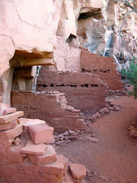 Honanki Ruins - Sedona, AZ.  I work on this forest (Coconino).  What wonderful treasures we have to protect. <3