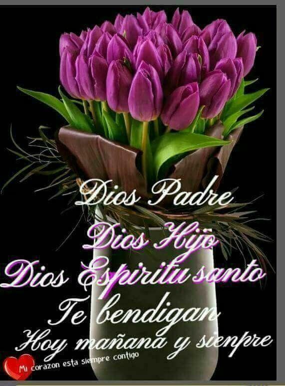 Buenos Dias Imagenes Con Flores 322 Saludos De Buenos Dias Buenos Dias Saludos Buenos Dias