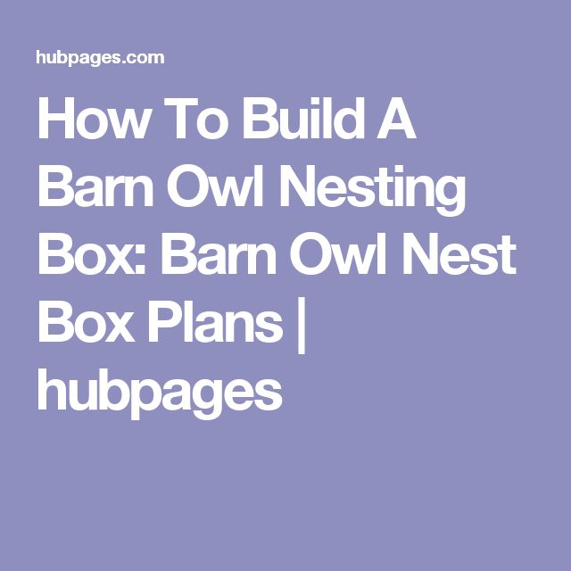 How To Build A Barn Owl Nesting Box: Barn Owl Nest Box Plans | hubpages