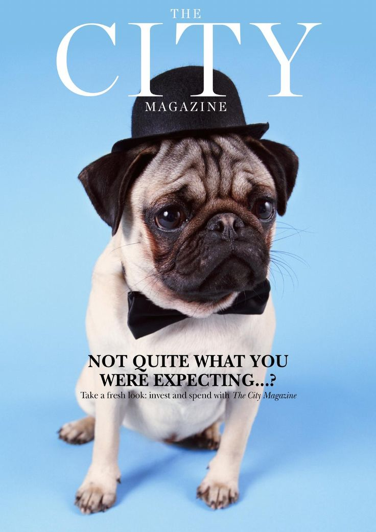 The City Magazine March 14  Welcome to the March edition of The City magazine, celebrating the dynamism of the area and bringing you the latest features, articles and reviews in the definitive guide for luxury modern living.
