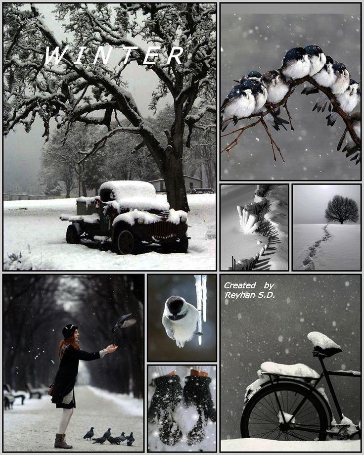 '' Winter '' by Reyhan Seran Dursun